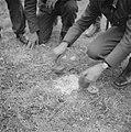 Serie Landmijnen ruimen bij Hoek van Holland, Bestanddeelnr 900-6436.jpg