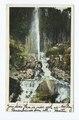 Shasta Springs Geyser, Mt. Shasta, Calif (NYPL b12647398-62092).tiff