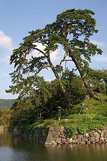 Shikano Castle