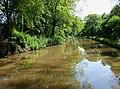 Shropshire Union Canal north of Market Drayton, Shropshire - geograph.org.uk - 1595411.jpg