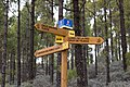 Signpost S-50 Gran Canaria (MGK26565).jpg