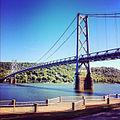 Simon Kenton Memorial Bridge Maysville KY to Aberdeen OH.jpg