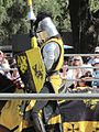 Sir Gregorio at Norcal Ren Faire 2010-09-19 15.JPG