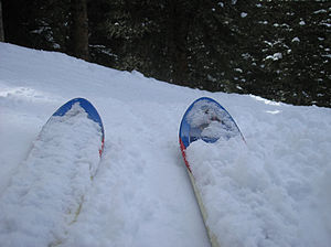 Skis (Photo credit: Wikipedia)