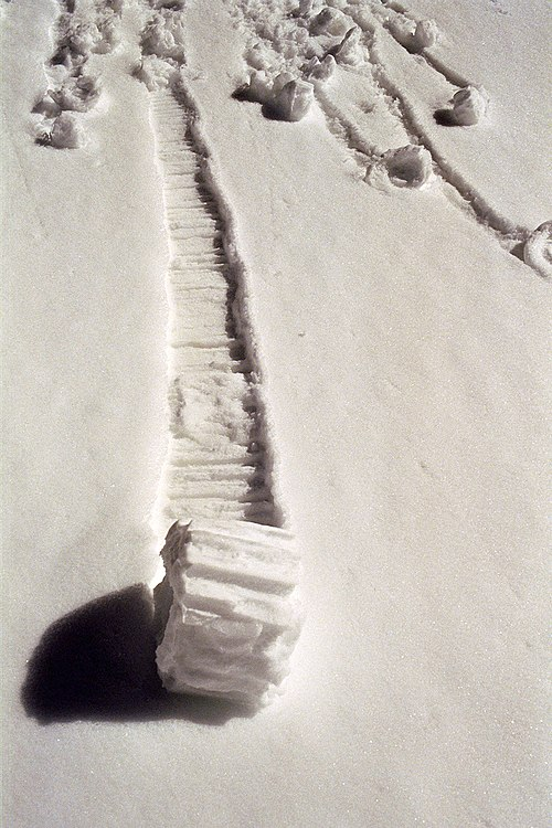 Snow roller with a gear-like shape from Rocky Mountain National Park, Colorado. Snow Roller.jpg