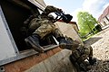 Soldier Jumping Out of Window MOD 45154897.jpg