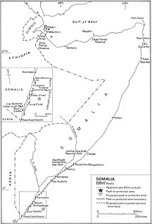 Somalia-Ambiente-Somcoralreef
