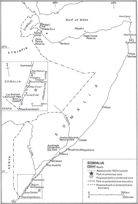 Somalia's coral reefs, ecological parks and protected areas Somcoralreef.jpg