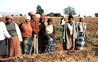 Economy of South Africa - Farm workers
