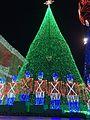 Spectacle of Dancing Lights (26611382156).jpg