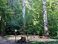 Spielplatz im Wald - panoramio.jpg