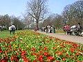 Spring at Alexandra Gardens - geograph.org.uk - 94906.jpg