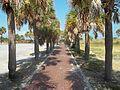 St. Petersburg FL Fort Desoto path01.jpg