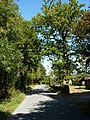 Stackwood Road - geograph.org.uk - 1474278.jpg