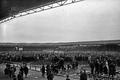 Stadebuffalo1922.PNG