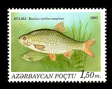 Stamps of Azerbaijan, 1993-196.jpg