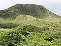 Starr-110924-9233-Andropogon virginicus-habit-Makamakaole-Maui (24995968022).jpg