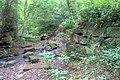 Stepping Stones, Scugdale Beck - geograph.org.uk - 849302.jpg