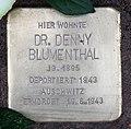 Stolperstein Helmstedter Str 12 (Wilmd) Denny Blumenthal.jpg