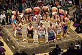 Sumo dohyo-iri May 2014 001.jpg