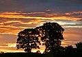 Sunset4 (1259294094).jpg