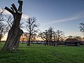 Sunset view from Ruskin Park (12037454166).jpg