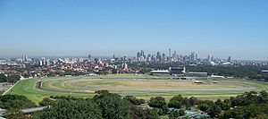 Thoroughbred racing in Australia - Royal Randwick Racecourse with Sydney skyline in background