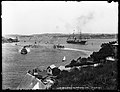Sydney WARATAH class ferries in LAVENDER BAY and Pacific Steam Navigation Company's 'Chimborazo-Lusitania' type between 1885 and 1893.jpg