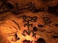 Taíno pictographs Cuevas de las Maravillas 2.jpg