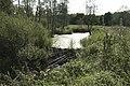 Tama bobrowa - panoramio.jpg
