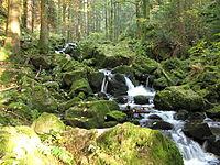 Teichschlucht Schwarzwald 03.jpg