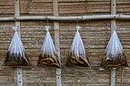 Tenghilan Sabah Eels-for-sale-01.jpg