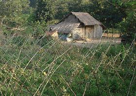 280px Ngôi nhà tranh ở Việt Nam