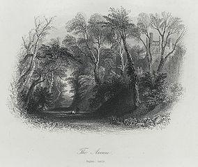 The Avenue, Raglan Castle