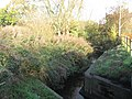The Gad Brook looking downstream and before it joins the River Dane - geograph.org.uk - 2697006.jpg