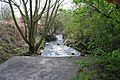 The Nut Brook - geograph.org.uk - 775010.jpg