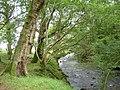 The River Irt - geograph.org.uk - 556450.jpg