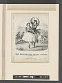 The celebrated polka dances (NYPL b12149191-5241043).tiff