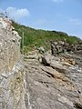 The start of the cliff-top path north of the Beach Cafe, Benllech - geograph.org.uk - 1341565.jpg