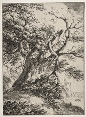 Specimens of Polyautography:  Landscape with an Oak Tree (1940.1124)