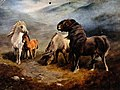 Three ponies and a foal standing on a windy heath. Process p Wellcome V0020502.jpg