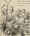 Through the looking glass and what Alice found there (1897) (14779330074).jpg