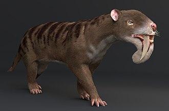 Thylacosmilus - Restoration