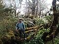 Tiyo Romy Colarte at Summit of Blue Mountain Lanao del Sur Mindanao Philippines.jpg