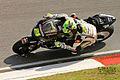 Toni Elías - LCR Honda MotoGP (5480849030).jpg