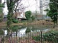 Tower Pond - geograph.org.uk - 107105.jpg