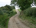 Track north of Laughton, Leicestershire - geograph.org.uk - 545181.jpg