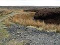 Track to Rimmon Pit Clough and Cottage - geograph.org.uk - 406691.jpg