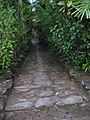 Trail to Yap Village (2849027315).jpg