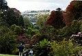 Trebah Garden looking towards Helford River - geograph.org.uk - 349918.jpg